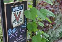 Victory Garden / by Smithsonian Gardens