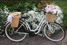 **Bicycles With Baskets** / by Carol Austin