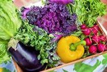 """Les astuces veggies / Retrouves les actus du blog """"Le lundi, c'est Veggie !"""" autour de la cuisine et du mode de vie flexitarien, végétarien, végétalien ou vegan !"""