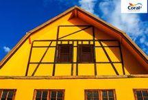 Amarelos Edificantes