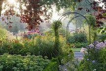 Beautiful Nature and Garden / In Avarte Group we love nature and want to bring it also to our design pieces.