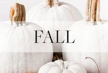 Fall Holiday Inspiration / Seasonal DIYs, recipes and inspiration for Halloween, Thanksgiving + more.