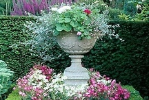 Curb Appeal and Landscape / by Minkspot
