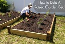 GARDEN-RAISED BED / by TAMBRA FRANK