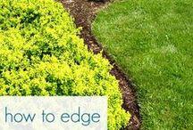 Landscaping / Ideas for my lawn / by Jennifer Hatfield