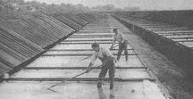 Historic Solar Saltmaking / Historic photos of solar saltmaking in the US and abroad. History is part of our inspiration. Passion to make the world's tastiest, purest sea salt to make food better is the rest.