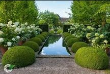 Garden: pools, spas, water features, ponds etc. / by Janet Lohman