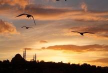 Turkiye / by Emine