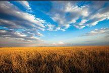 Amazing Texas Vistas