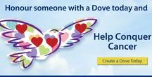 Doves of Hope / The Doves of Hope campaign symbolizes unity, hope and strength for cancer patients and their families during the holidays. Together, the doves unite us all in our vision to Conquer Cancer In Our Lifetime.