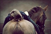 Equestrian / by Vanilleblume
