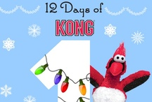 12 Days of KONG Fest / by KONG Company