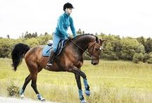 FOR THE RIDER / Here you will find riding wear for women, men and children. We have everything you need - jackets, tops, breeches, safety vests, helmets, boots and more. We have many different brands - both external and our own - and we put a lot of work into developing products with good quality and functionality at great prices.