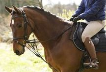TIPS & TRICKS / Great tips and practical solutions for everything concerning you and your horse.