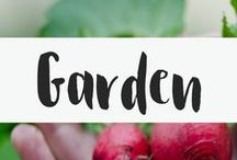 Garden / I love to garden. I love growing vegetables in the dirt with my bare hands. But we all could use some gardening tips to help us grow huge veggies. From garden planners to vegetable gardening tips to small garden design plans, this board has it all.