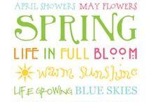 Spring / by Kim Lawson
