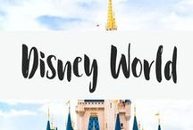Disney World / Everything disney world