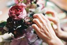 la Flor / floral inspiration