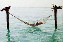 travel [ Oceania Islands ] / oceania bucket list, oceania islands, island destinations, best islands to visit, best island to visit, best tropical islands to visit, top island destinations, island getaway