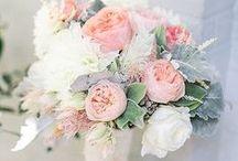Blush & Ivory Florals