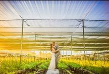 Farm to Table Wedding / Coordination by The Planning Company