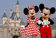 Disneyworld / Disney, Disneyland, Disneyworld, Mickey Mouse, hotel, Florida, Rides, Pixar, buena vista, orlanda