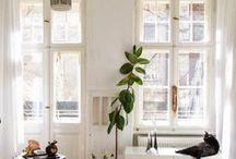 Home Inspiration / The best home inspiration across Pinterest.