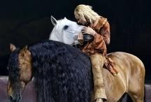 Horses / by Shelley Washburn