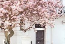 Spring / The best spring inspiration & outfits on Pinterest.