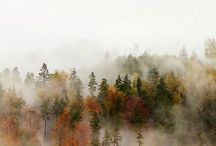 Autumn / The best autumn inspiration & style on Pinterest.