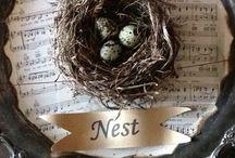 Nests / by Sharon Kuplack