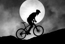 {bicycles &c} / by Hannah B.