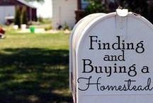 {homesteading} / by Hannah B.