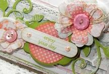 Cards:  Awesome Ideas / Okay..okay...I'm into this big time - love learning new skills and I have lots of family to practice on!  <smile> / by Anita Freeman