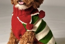Holiday Sweaters... for Dogs /   / by ALetterToMyDog.com