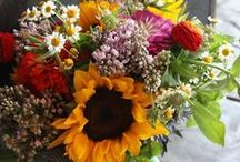 Beautiful Blooms / by Style Me Sweet Design