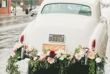 [i do] / general wedding whimsy / by Carly Hume
