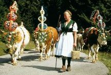 German Life / Life, traditions, events, things cute or simply quirky
