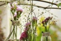 Gardenites