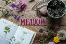 Meadow Collection / Designs inspired by wildflower meadows.