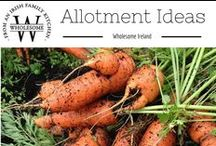 Allotment Ideas / Allotments, home grown fruit & vegetables, gardening, tips and tricks on the allotments, gardening, it's a way of life. I've an allotment & I'm proud! / by Wholesome Ireland