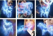 Harry Potter / by Ashley Milton