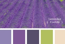 Color Inspiration / by Laura Hubbell
