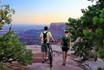 Mountain Biking Moab
