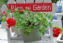 Garden Ideas / by Janeen Bacal