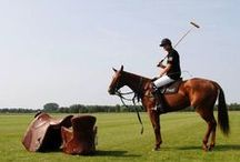 Tally-Ho its A Sporting Life - Inspiration / Heritage values of fair play and sportsmanship.