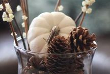 The Wonderful Fall / My favorite time of the year!  Fall decorating ideas and DIY crafts.