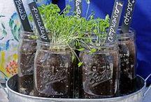 Gardening Ideas / by Carrie @curlycraftymom.com
