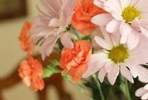 Les Fleurs / by Ashley Airey