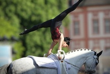 Vaulting vaulting vaulting. <3 / by Meaghan Kailey Tvedt